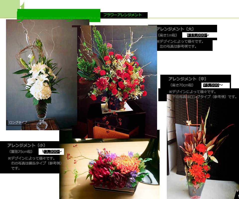 Bs flower voltagebd Images